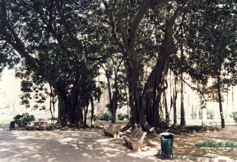 ludoteca giardino palermo giardino inglese 187 palermo 187 provincia di palermo 187 italia