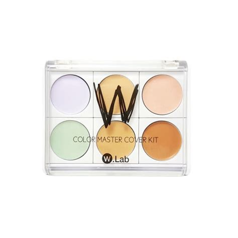 w lab color master cover kit w lab blusher and cheek
