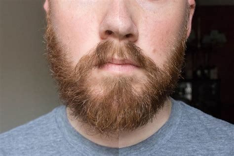 how to trim men pictures how to trim a beard with scissors with pictures tools