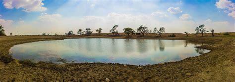 thar desert image gallery oasis in thar desert