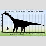 Bruhathkayosaurus | 588 x 335 jpeg 38kB