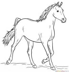 how to draw an arabian horse step by step drawing tutorials