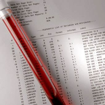 creatinine blood test creatinine blood test normal range low high results
