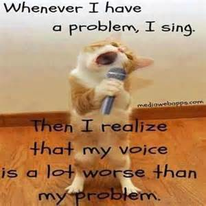 Singing Cat Meme - now that s funny stuff right there ramblings of a mad