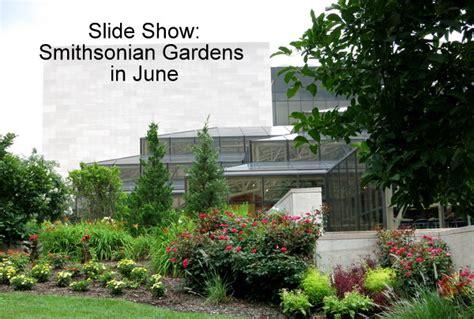 Smithsonian Botanical Gardens Smithsonian Gardens In June Dc Gardens