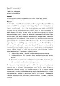 Discussion In Lab Report Sample Plasmid Isolation Lab Report