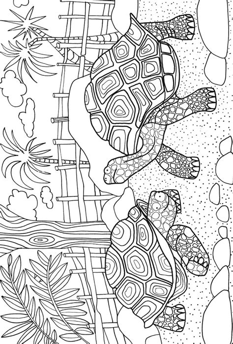zoo coloring pages for adults turtles zoo animals sle colouring pages dover