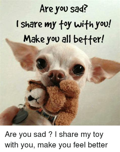 How Do I Make A Meme With My Own Picture - are you sad share my toy with you make you all better