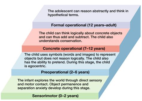 Cognitive Development Theory Theories Of Human Development Boundless Psychology