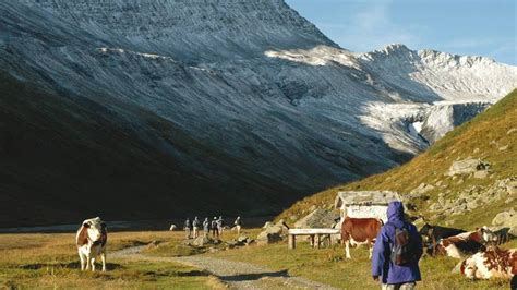 Selmpang Mont Blanc 8163 2 mont blanc guided walk sherpa expeditions autos post