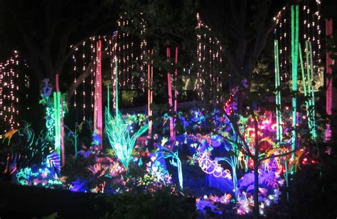 Zoo Lights Houston 2013 365 Things To Do In Houston Zoo Lights Houston