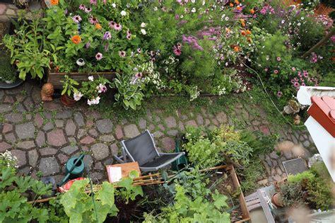 Hochbeet Bef Llen Garten 2713 hochbeet anlegen befuellen bepflanzen tipps mksurf club