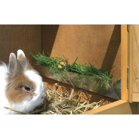 gabbia per coniglio nano gabbia coniglio nano in legno emporio genova