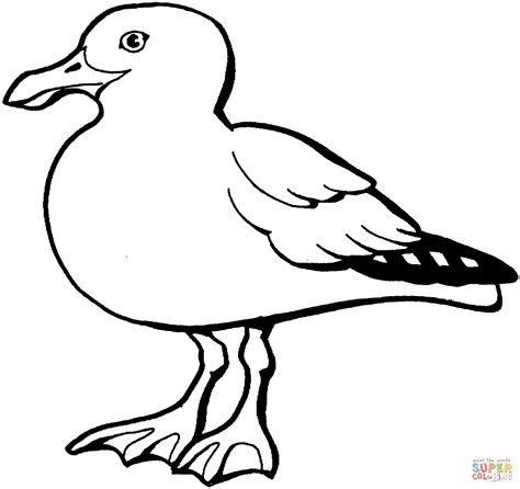 sea birds coloring pages sea birds coloring pages coloring pages
