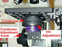Condenser Adjustment Knob by Histology A560