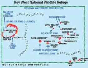 key west national wildlife refuge protects birds and sea