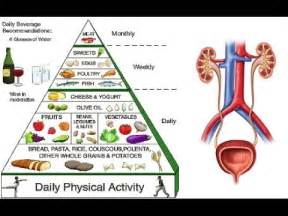 kidney disease diet nephrology conferences dialysis renal kidney autos post