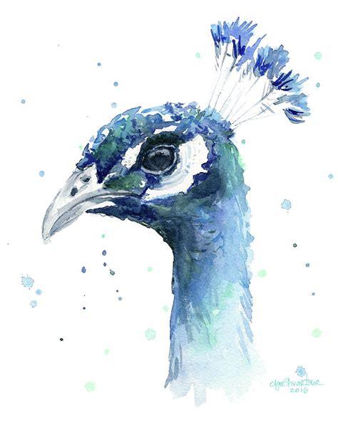 watercolor painting peacock watercolor painting by olga shvartsur