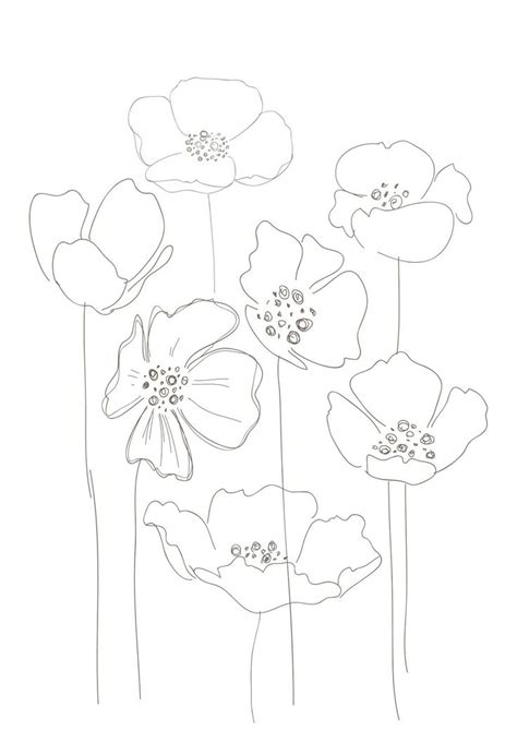 printable instructions for drawing flowers bobbie print floral drawings draw pinterest drawing