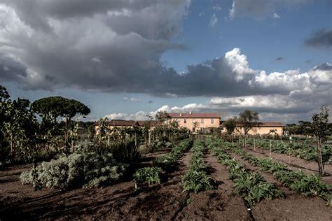 fiorano times fiorano wine estate in italy a comeback the new