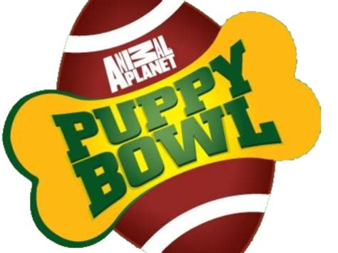 puppy bowl 2017 date and time puppy bowl features wilma from a marlton rescue