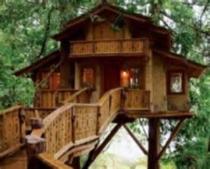 Backyard Treehouse Designs by Pining For A Forest Retreat The Breathtaking Tree Houses