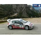 TopWorldAuto &gt&gt Photos Of Peugeot 206 WRC  Photo Galleries