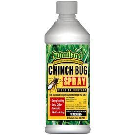lowes bed bug spray shop sunniland 16 oz chinch bug spray at lowes com