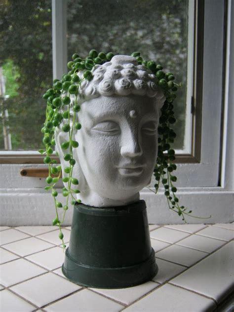 buddha plant pot buddha head succulent planter concrete
