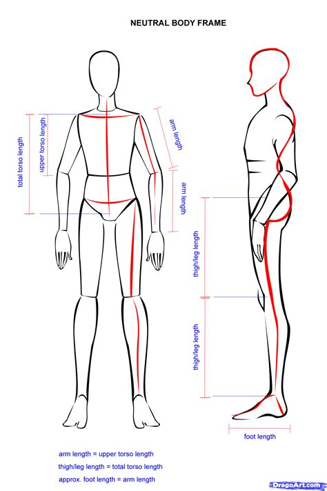 Drawer Person by How To Draw An Easy Person Step By Step Anatomy