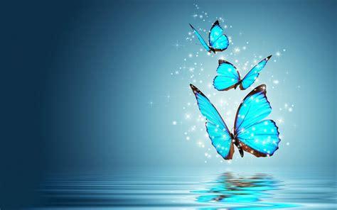 imagenes animadas de mariposas volando butterfly 73 vuela vuela mariposa