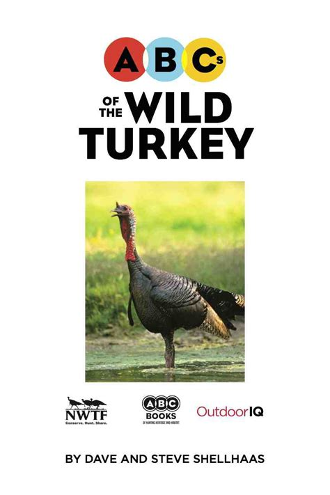 the simi s abcs adventures with hunters books abcs of the turkey outdooriq org