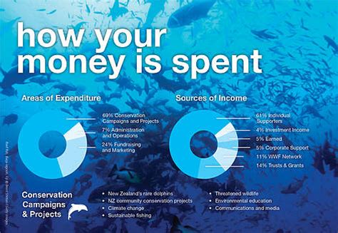 wwf charity letter how we raise spend donations wwf new zealand
