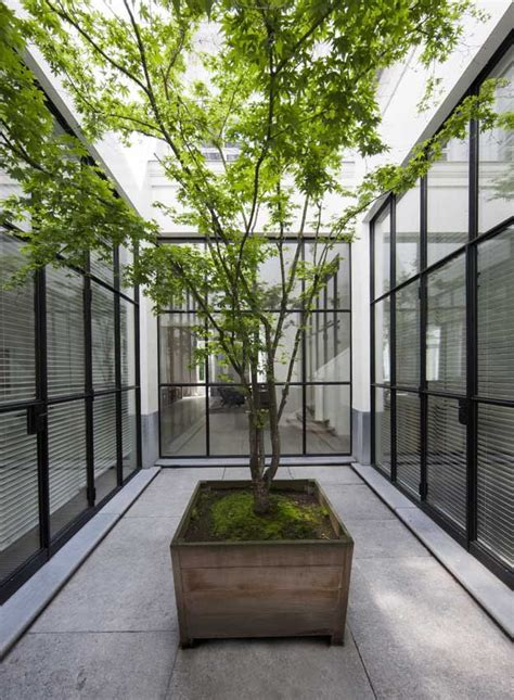 courtyard with small tree adding a sense of nature vincent van duysen residence by vincent van