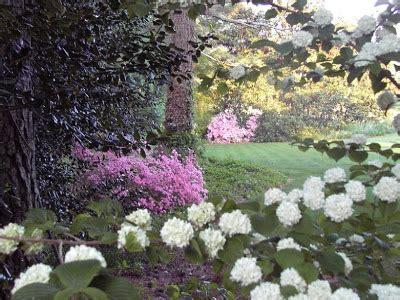 puisi musim semi  tiba