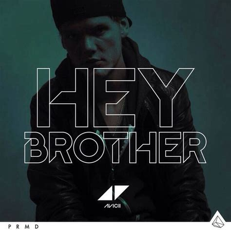 avicii new cd video premiere avicii hey brother