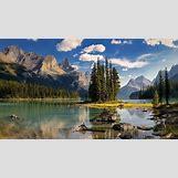 New Year Wallpaper Hd   1366 x 768 jpeg 340kB