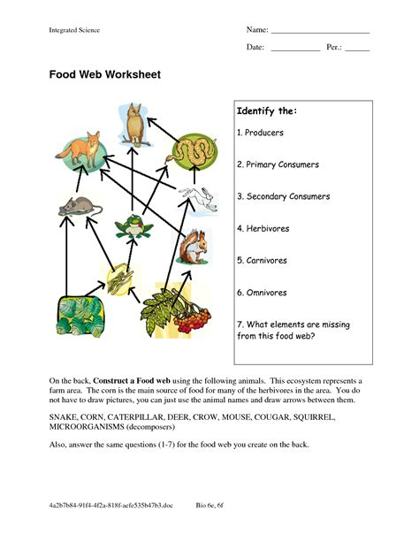 Food Chain Worksheet by Food Web Worksheets Food Web Worksheet Doc