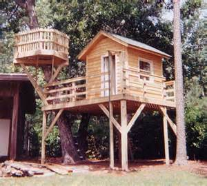 treehouse builder treehouse building design of your house its idea
