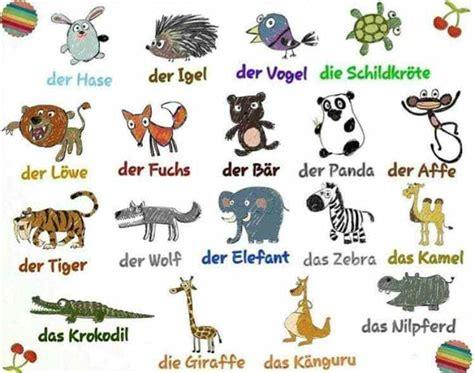die tiere hewan  bahasa jerman