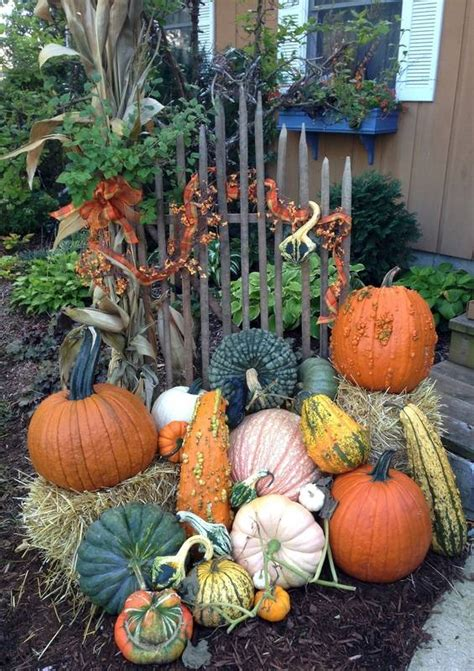 decorating with pumpkins and gourds dailyherald