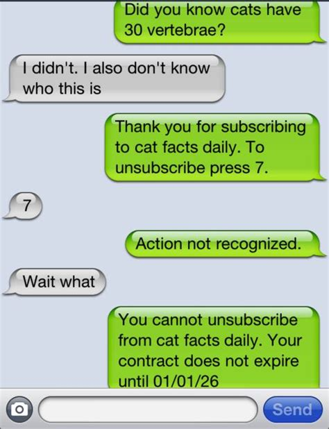 Find Random To Text 25 Best Ideas About Cat Facts Text On April