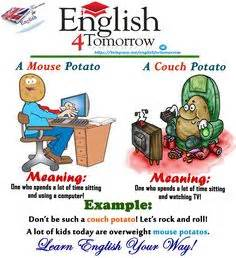 what does the idiom couch potato mean to blow a fuse english idioms and vocabulary pinterest
