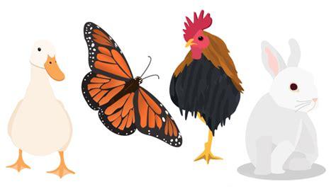 imagenes vectoriales animales gratis viernes de vectores gratis animales vectores
