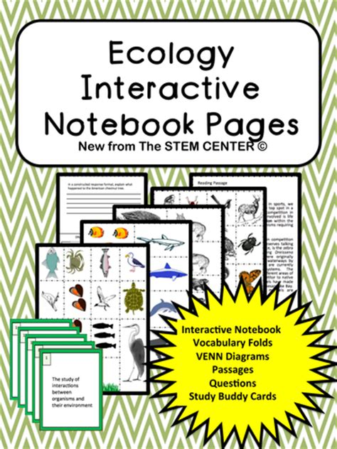 section 19 1 review ecology ecology interactive science notebook by stemcenter