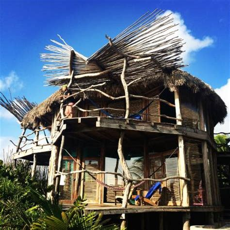 tree house living picture of azulik, tulum tripadvisor