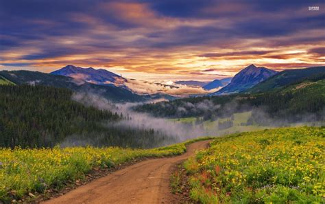 amazing valley path sunset fog wallpapers amazing valley