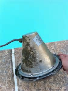 Pool Light Fixture Replacement Light Bulb Replacement