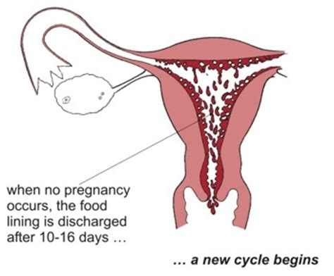 Light Period On The Pill by Is Discharge Normal After Hysterectomy Images Frompo