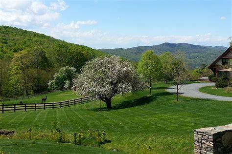 tree farms for sale vermont farms for sale 171 landvest